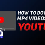How to Download Videos Online