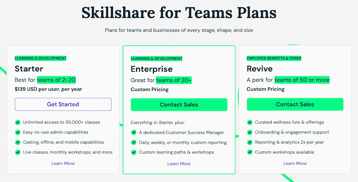 how much does skillshare pay youtubers